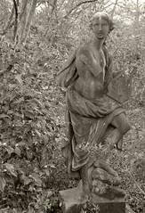 IMG_7042 (sandy richard) Tags: gardens longisland plantingfields plantingfieldsarboretum sandyrichard sandrarichard