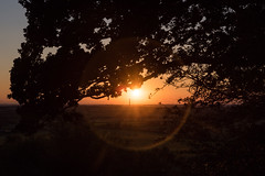 DAN_2641 (dan_c_west) Tags: sunset lens landscape nikon flare d750 warwickshire