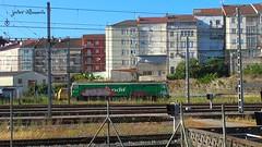 Bajo un sol de justicia (javivillanuevarico) Tags: trenes galicia ourense adif