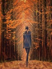 """Ne gemite saplanp kalacaksn,  ne gelecein dlerini kuracaksn... mr dediin u andr,  onu da hakknca yaayacaksn."" Can Ycel *** happy weekend my friends   #photography #nature #forest #autumn #fall #leaf #bokeh #edit #art #collage #women #d (mrbrooks2016) Tags: illustration freeart autumn collage photography dream forest artwork edited photodesign leaf nature art fall edit fantastic women bokeh people"