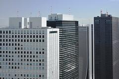 Skyscrapers in ShinjukuTokyo (Iyhon Chiu) Tags:    skyscraper shinjuku tokyo japan building cityscape city       observationdeck