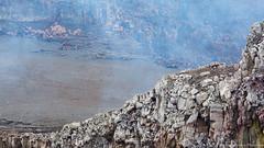 12. Volcan Masaya, Nicaragua-7.jpg (gaillard.galopere) Tags: 2016 actif eruption gaillardgalopere masaya travel traveling volcan volcanes volcano activ activity fumeroles fumerolles gaillard galopere lava magma nature