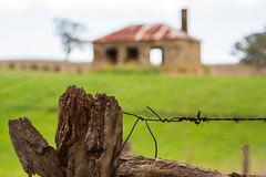 Happy farm fence Friday (cheezepleaze) Tags: fence farm ruins hff