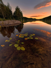 september-5 (Odar Gofot) Tags: water reflection summer trees lake lakescape norway landscape plant red green blue sky clouds