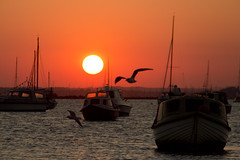 Sunset 4 (Paulfeb282) Tags: paulfeb282 paulcoxon paul coxon dorset sandbanks beach sunrise sunset sea front sunny day