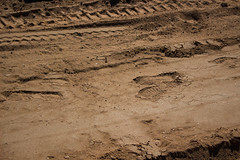 steps (xcheneba) Tags: dirt treads soil construction