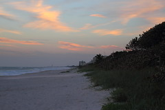 DOWN THE BEACH (R. D. SMITH) Tags: beach sand grass clouds sky florida naturephotography canoneos7d