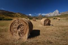 Rulos (Anpegom fotografa) Tags: rulos verano valledearbas len cuatrovalles casaresdearbs castillaylen espaa spain anpegomfotografia