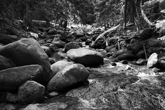 *** (pszcz9) Tags: polska poland przyroda nature strumie stream kamie stone woda water las forest beautifulearth natura bw blackandwhite monochrome czarnobiae sony a77