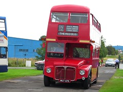 Red Bus Company RM875 (WLT875) - Lathalmond - 20-08-16 (peter_b2008) Tags: redbuscompany londontransport aec routemaster parkroyal rm875 wlt875 svbm lathalmond vintage preserved buses coaches transport buspictures