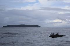 Isla del Cao, Costa Rica (Baptiste L) Tags: isladelcao canoisland costarica drakebay bahiadrake peninsulaosa corcovadonationalpark corcovado pacificocean