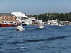 16-08-28-83 (Bill Billings) Tags: branchoffice strozier deepseafishing