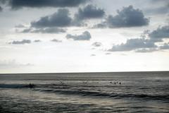 DSC00593(1) (Julia Malm) Tags: mexico puerto vallarta guau sayulita san pancho beach playa busride ocean vacation bikini friends family tortugas food hamburguesa con camarn agua de jamaica pollo ajo foodporn