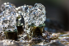 You are cold as ice (_ME_photography) Tags: regensburg ratisbona ratisbon bayern bavaria deutschland germany brunnen springbrunnen fountain wasser water frozen gefroren kurz tamron sp macro makro canon eos 600d apsc lightroom lr5 nah outdoor splash figuren eis ice klar raw freeze fast knigswiesen detail dynamik dynamics aqua clear eau