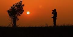 Twitching @Sundown (Cal Killikelly) Tags: burton point dee estuary sunset birdwatcher twitching silhouette