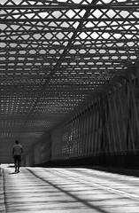A pied d'oeuvre... (NUMERIK33) Tags: pont eiffel