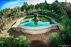 Roma (DavidGutta) Tags: roma romani rome italy italia monumenti colosseo fori imperiali gita trip viaggio museo storia story history paesaggio landscape