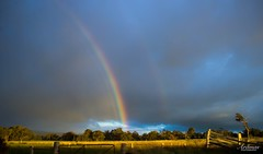 Out at Serpantine   #rainbow #winter #rain #lamdscape #beautiful #nature #serpantine #wa #australia #colours #trees #green (aramas_photography) Tags: rainbow winter rain clouds wa beautiful nature landscape australia