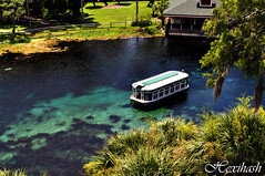 The Old Glass Bottom (hexihash) Tags: park blue silversprings sea vacation white black green water glass beautiful grass ferry silver fun photography boat nikon day ship ride shot bright florida d postcard bottom sunny clear explore springs theme 5000 attraction explored d5000 hexihash