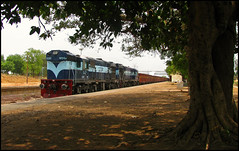 KGP WDG-3A Duo @ Lapanga (Ankit Bharaj) Tags: india train canon photography is diesel indian engine rail goods locomotive 100 railways dlw freighter enthusiasm ankit sx alco lapanga railfanning kgp kharagpur orrisa irfca bharaj wdg3a jharsuguda boxn rengali