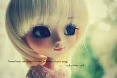 Emilys quote (FireflyFlyAway ) Tags: light 3 love hp bokeh quote harrypotter pullip forever lightening omg dumbledore albus junplanning ddalgi rewigged