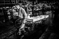 Blood, Sweat and Tuna (explored!) (candersonclick) Tags: morning travel vacation motion japan photography tokyo am workers asia taiwan fast busy traveling travelers tsukijifishmarket travelphotography 2011 canderson