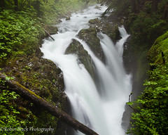 Sol Duc Falls (Olympic National Park) (Robin Black Photography) Tags: longexposure wednesday waterfall nationalpark rainforest ngc falls olympic peninsula naturesbest roaring solduc nationalgeographic raging blurredwater watermotion outdoorphotographer canon5dmarkii robinblackphotography