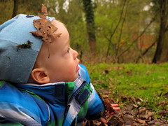 Crawling on the Autumn Ground (Batikart) Tags: boy portrait people baby motion boys face childhood closeup rural canon germany geotagged fun outdoors happy deutschland person leaf kid spring europa europe child emotion time head joy perspective tranquility happiness ground foliage soil attitude cap passion april balance satisfaction activity relaxation beanie ursula crawling enjoyment bielefeld rainwear oneperson 2012 pos confidence 12years sander g11 satisfied individuality glcklich blondhair vitality onechild casualclothing oneboy northrhinewestphalia realpeople nonurbanscene childrenonly onegirlonly batikart onechildonly sennestadt eckardtsheim canonpowershotg11