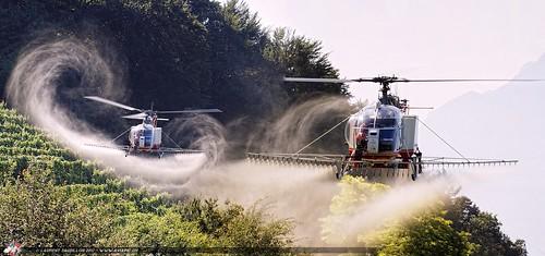 Spraying Squadron