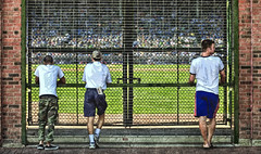 Game Day (Wes Iversen) Tags: sports baseball fences wrigleyfield chicagocubs knotholes hff fencefriday