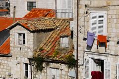 Dubrovnik (Lin.y.c) Tags: travel europe croatia d200 dubrovnik adriatic gf1 1dsc1150595