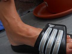 moroccan model 20 (mohawkvagina) Tags: sexy feet rose female moroccan veiny sexyfeet femalefeet womensfeet feetmodel veinyfeet milffeet veinyfemalefeet sexyveinyfeet sexyveiny veinymoroccan veinymoroccanfeet veinymoroccanfemale