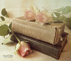 Books and roses (Kerstin Frank art) Tags: roses texture photoshop soft books oldbooks