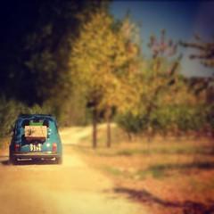 Tuscan Wine Tours