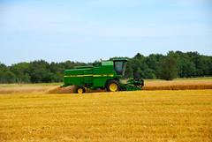 field denmark wheat combine johndeere postcardtoblogcamp 366the2012edition