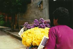 (Ivette Diaz) Tags: travel film mexico polaroid oaxaca instant canonae1 fujifilminstax