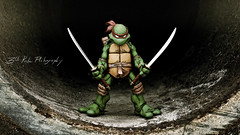 Leader (3rd-Rate Photography) Tags: canon toy book comic florida action 7d figure jacksonville leonardo teenagemutantninjaturtles tmnt neca peterlaird toyphotography kevineastman earlware 3rdratephotography