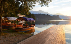 Morning at lake Bled - 1 (SilvyP (on and off)) Tags: morning light castle sunrise boat slovenia bled lakebled nikon7000 silvyp