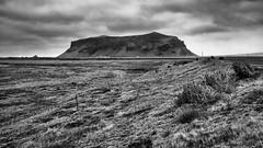 DSC_5281 (vargandras) Tags: iceland nikkor2835ai bw landscape roadside
