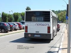 NAPOLEONE Viaggi (3) (AlebusITALIA) Tags: autobus bus tram trasporti trasportipubblici tpl transportation publictransport mobilit ortona bredamenarinibus napoleoneviaggi m231 minibus