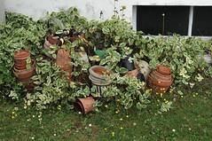 un peu de pot, pour une fois... (un sablier) Tags: pot vinca fentre garden jardin terrecuite terracottapot