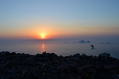 Paradise on earth. (luisfernandes7) Tags: seascape peniche travel summer paraso beach paradise nature isle ilha prdosol sunset ilhadasberlengas berlengas portugal praia natureza