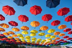Schirme_14411 (riga51) Tags: august2016 schirme umbrella fujixt10 sunumbrellas summer bunt colorful frhlich funny sommer