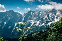 rossfeld (sowikus) Tags: canoneos100d rosfeld sterreich salzburg austria mountains berge berg alps germany alpen mountain