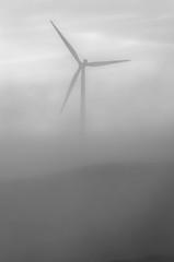 Turbine in the mist (dave.fergy) Tags: dawn monochrome weather landscape windturbine machinery mist blackandwhite mono ashhurst manawatuwanganui newzealand nz