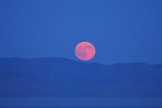 Full Moon ... 18 August 2016