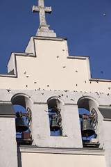 le rassemblement  des hirondelles (mrieffly) Tags: cloches eglise hirondelles canoneos50d