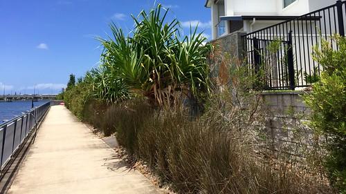 Birtinya, Sunshine Coast, Queensland