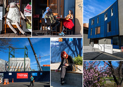 Postcard from Christchurch (Jocey K) Tags: christchurch newzealand postcard collage sheep people buildings architecture rebuild construction blossom shadows sky clouds crane bar