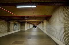 DSC_2887 (daturiemme) Tags: london londra uk england inghilterra city street winter